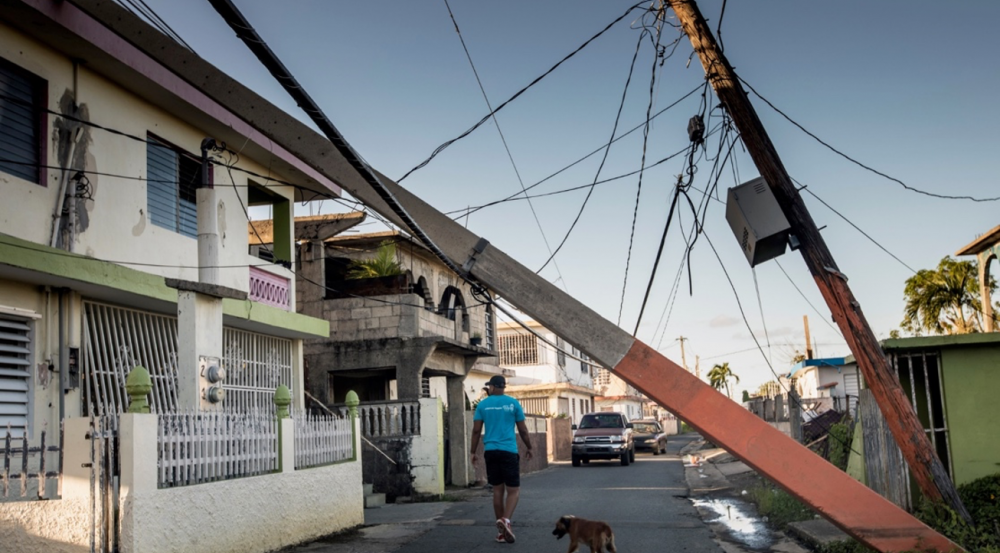 Downed power lines meant many people in Puerto Rico were without electricity for months. The researchers hope their analyses will help Puerto Rico build stronger electrical systems and prevent large-scale power outages in the future. Photo: Lorenzo Moscia