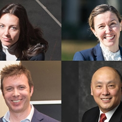 Photo montage of the four new IEEE Fellows from MIT
